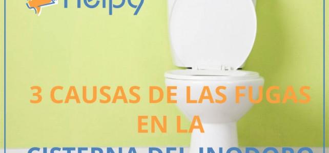 Arreglar cisterna del inodoro: 3 Causas de las fugas en la cisterna del inodoro